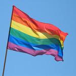 (同性婚 in 台湾) 多元成家草案ーその4.ー司法法制委員会で審議